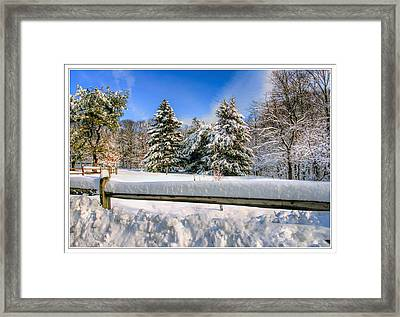 3 Trees At Holmdel New Jersey Long Street Farm Framed Print by Geraldine Scull