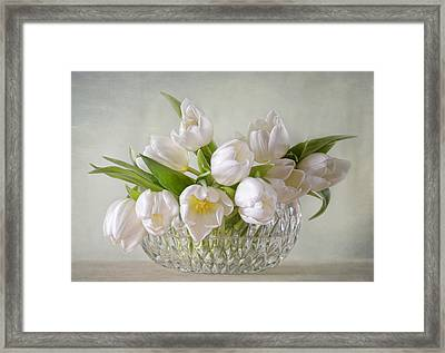 Tulips Framed Print by Steffen Gierok