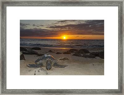 Turtle Beach Sunset Oahu Hawaii Framed Print