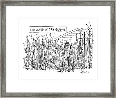 Declared Victory Garden Framed Print by Mike Twohy