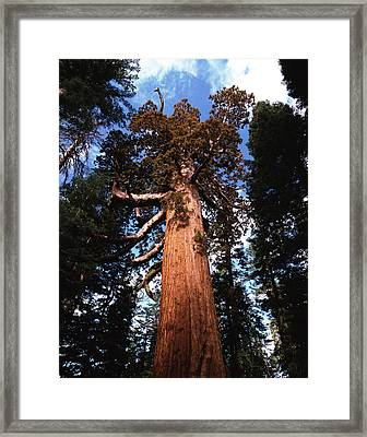 Usa, California, Yosemite National Framed Print by Adam Jones
