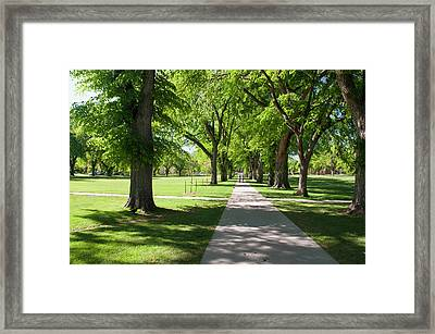 Usa, Co, Fort Collins Framed Print by Trish Drury