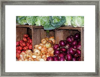 Usa, Georgia, Savannah, Fresh Colorful Framed Print by Joanne Wells