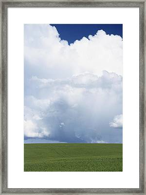 Usa, Idaho, Green Wheat Field, Clouds Framed Print by Gerry Reynolds