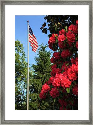 Usa, Oregon, Salem, State Capitol Framed Print by Rick A Brown