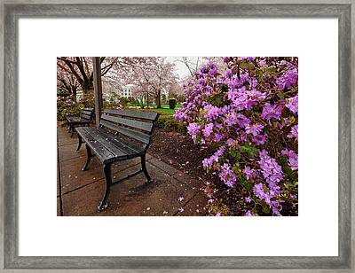 Usa, Oregon, Salem, State Capitol State Framed Print by Rick A Brown