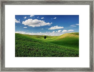Usa, Washington State, Colfax, Rolling Framed Print