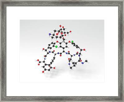 Vancomycin Antibiotic Molecule Framed Print