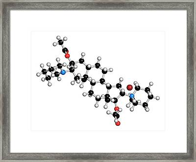 Vecuronium Bromide Muscle Relaxant Framed Print