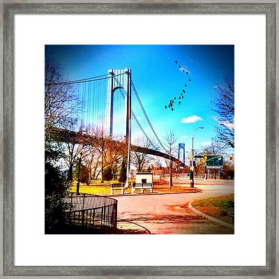 Verrazano Narrows Bridge Framed Print by Frank Winters