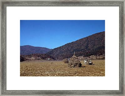 Virginia Farm, C1940 Framed Print by Granger