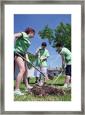 Volunteers Planting Trees Framed Print by Jim West