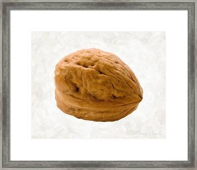 Walnut Framed Print by Danny Smythe