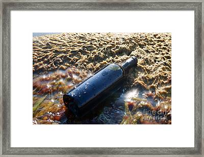 Wine In The Bottle. Framed Print by Alexandr  Malyshev