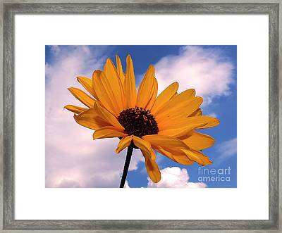Yellow Flower Framed Print by Elvira Ladocki