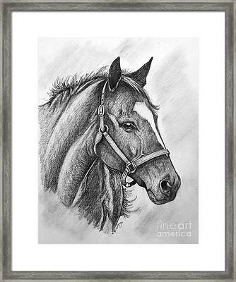 Framed Print featuring the drawing Zenyatta by Patrice Torrillo