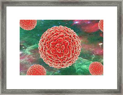 Zika Viruses Framed Print by Kateryna Kon