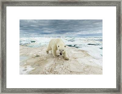 Canada, Nunavut Territory, Repulse Bay Framed Print by Paul Souders