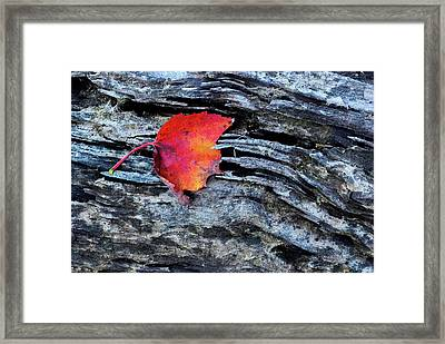 Usa, New York, Adirondack Mountains Framed Print by Jaynes Gallery