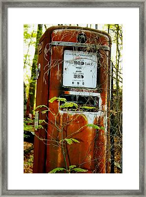 Framed Print featuring the photograph .32gal by Steve Godleski