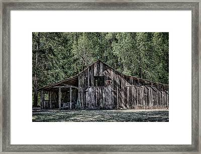 33 Framed Print by Betty Depee