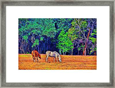 Framed Print featuring the photograph 3485-200 by Lewis Mann