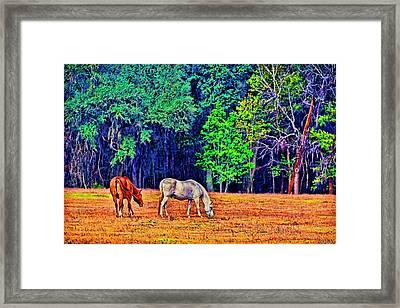 3485-200 Framed Print by Lewis Mann