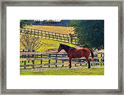 Framed Print featuring the photograph 3487-200 by Lewis Mann