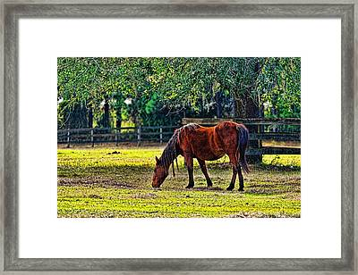 Framed Print featuring the photograph 3489-200 by Lewis Mann
