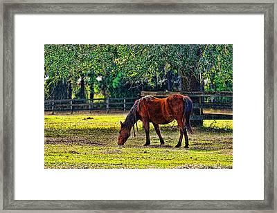 3489-200 Framed Print by Lewis Mann