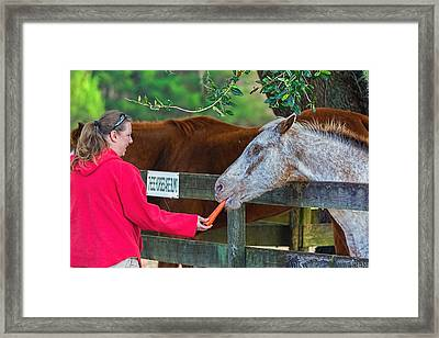 Framed Print featuring the photograph 3490-200 by Lewis Mann