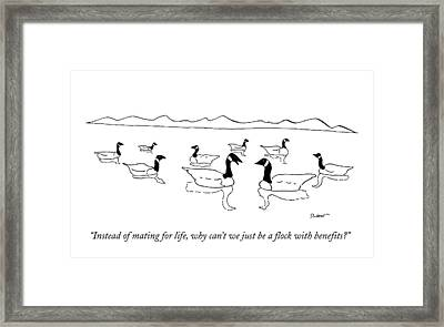 Instead Of Mating For Life Framed Print