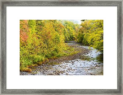 Williams River Autumn Framed Print by Thomas R Fletcher