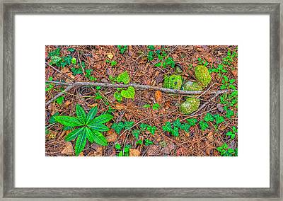 Framed Print featuring the photograph 3702-7-202 by Lewis Mann