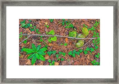 3702-7-202 Framed Print by Lewis Mann