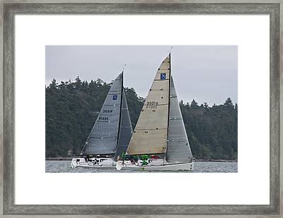 Whidbey Island Race Week Framed Print