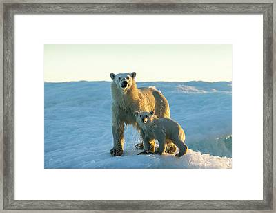 Canada, Nunavut Territory, Repulse Bay Framed Print