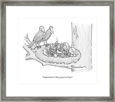 Congratulations!  Now You Get To Eat Bugs! Framed Print