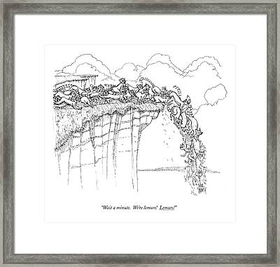 Wait A Minute.  We're Lemurs!  Lemurs! Framed Print