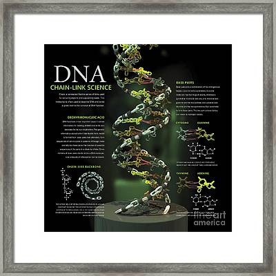 3d Poster Illustration Of Dna Framed Print by Nicholas Mayeux
