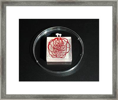3d Printed Tissue Simulation Framed Print