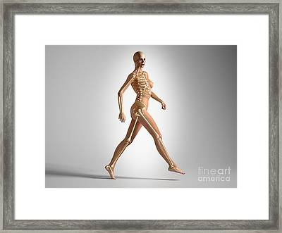 3d Rendering Of A Naked Woman Walking Framed Print by Leonello Calvetti
