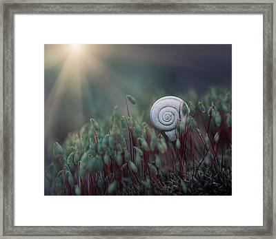 ....@. Framed Print
