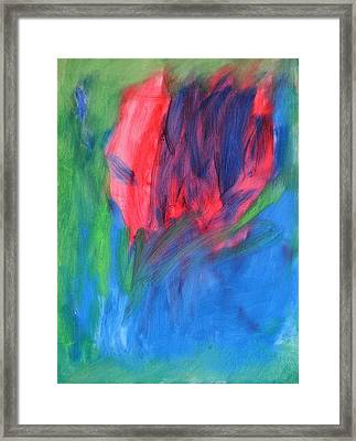 4-13-2013 Framed Print by Shawn Marlow