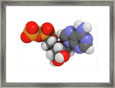 Adenosine Diphosphate Molecule Framed Print by Molekuul