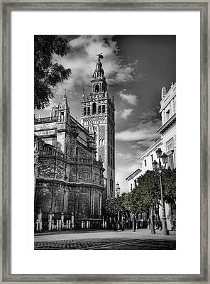 Alicia Morales Framed Print