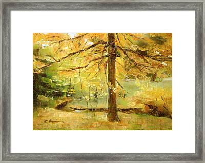 Autumn Canopy Framed Print by Chisho Maas