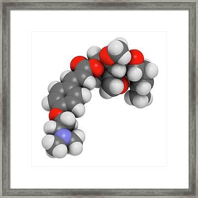 Beloranib Obesity Drug Molecule Framed Print by Molekuul