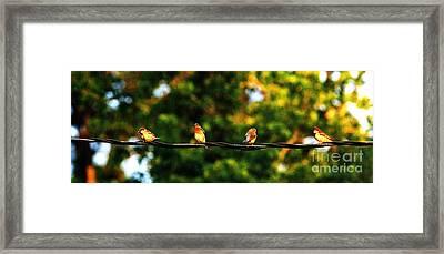 4 Birds Framed Print by Leon Hollins III