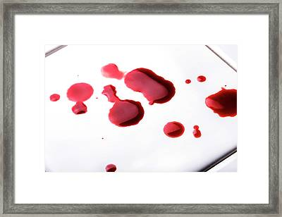 Blood Spatter Framed Print by Cordelia Molloy